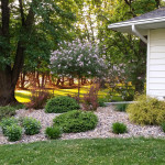 Landscaping Ideas Kenyon